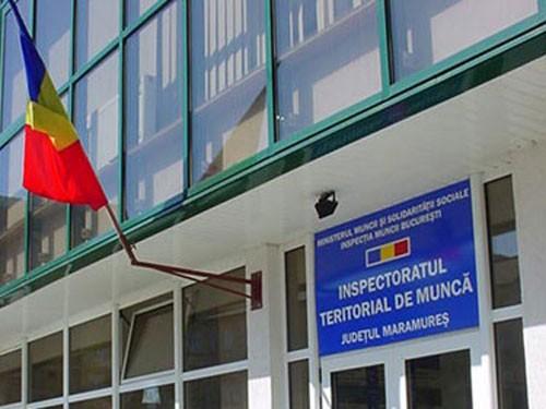 ITM MARAMUREȘ: Campanie de informare și control în domeniile panificație și reparații auto