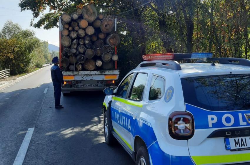MARAMUREȘ: Ample acțiuni desfășurate de polițiști pentru combaterea contrabandei cu tutun și a faptelor ilegale din domeniul silvic